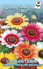 200 Semi/Seeds CRISANTEMO Carenato Tricolore Miscuglio