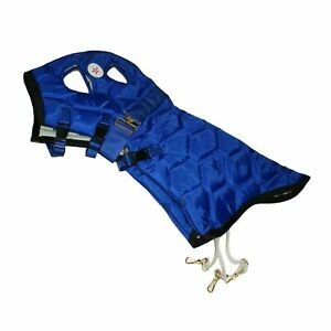 Weanling BIG D 14H' All American Insulated Horse Stable Hood, Blue/Black Trim