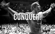ARNOLD SCHWARZENEGGER GYM BODYBUILDING GIANT ART PICTURE POSTER WHOLE POSTER