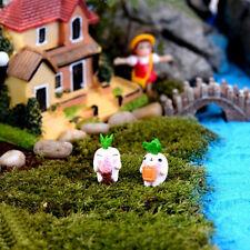 Cute Garden Ornament Miniature Figurine Craft Plant Pots Fairy Dollhouse Decor