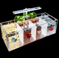Aquarium Züchter Box Schraffur Isolation Box für Guppys Betta Baby Fisch