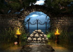 10x8ft Halloween Skull Stone Gate Torches Crows Photo Background Vinyl Backdrop