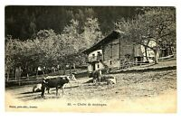 CPA 73 Savoie Chalet de Montagne animé animaux