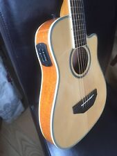 Turner RB20 Junior 3/4 travel guitar