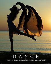 Ballet Dance Motivational Poster Art Print Shoes Flats Tutu Leotard Skirt MVP249