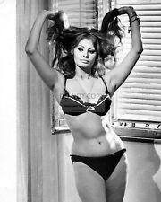 "SOPHIA LOREN IN ITALIAN FILM ""YESTERDAY, TODAY AND TOMORROW"" 8X10 PHOTO (FB-551)"