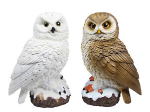 2pce Set of 26cm Realistic Owls Ornament with Glitter Snow Feature