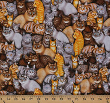 Meow Mix Cats Breeds Kittens Pets Animals Cotton Fabric Print by Yard D564.21