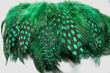 Guinea Fowl Feathers - Green