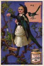 6 card Liebig Extract from set 161 bird woman circa 1875  and 2 RARE false c1880