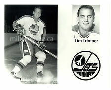 "HTF 1981-82 Tim Trimper Winnipeg Jets NHL Orig. Player Press Photo 8"" x 10"""