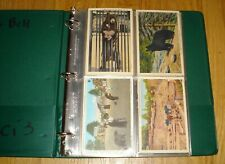 32 vintage color postcards of bears and other animals, in sleeves