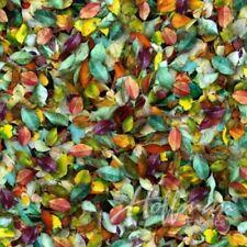 Hoffman Leaf Me Be Digital Q4451 593 August  Fabric