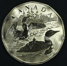 2002 Family of Loons Specimen Dollar - Limited Edition Loonie