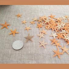 Tiny Size Dried Real Starfish Flat Sea Star Ornament Crafts Decorations 20 pcs