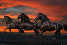 FANTASY HORSES - LANGRISH POSTER - 24x36 NATURE BEAUTY 34052