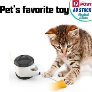 Cat's tumbler  toy kitten  interactive balance car cat chasing  toy  catnip  fun