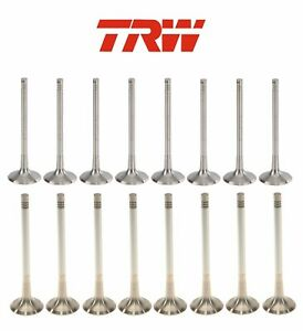 For Audi A4 A5 A6 Quattro Q5 VW Tiguan Jetta Set of 16 Intake & Exhaust Valves