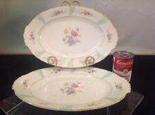 Vtg. Bavaria Elfenbein Porzellan 2 Serving Platters, Mixed Florals Hand Painted