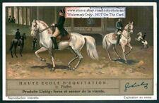 Piaffe Schooling Training Horses Equestrian1930s Trade Ad Card