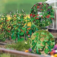 Busch 1214 NEW CUCUMBER & TOMATO PLANTS