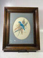 "John W. Taylor Framed Signed Art Print Bluebird On Branch Bird 18-1/4"" X 15-1/4"""