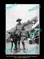 OLD LARGE HISTORIC PHOTO OF AUSTRALIAN ANZAC WWI 4th FIELD AMBULANCE DONKEY 1915