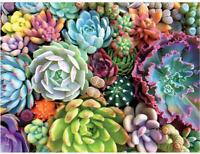1000 Pieces Jigsaw Puzzles Assembling Toys Educational,Succulent Spectrum Plants
