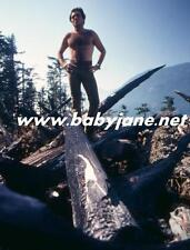 ARMAND ASSANTE HAIRY CHEST OUTDOORS COLOR PHOTO #2