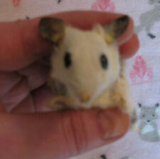 cute Mouse Soft Mount taxidermy rodent softmount