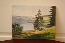 ~ ~ Antiguo Oleo sobre tabla ~ euro ~ ~ ~ Escena Lago Enmarcado Circa década de 1960 ~ en muy buena condición