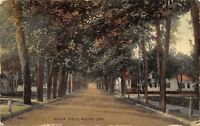 Winsted Connecticut~Concrete Posts on Tree-Lined Meadow Street~1921 Postcard