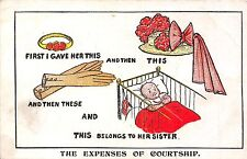 POSTCARD  COMIC    The  expenses  of  Courtship
