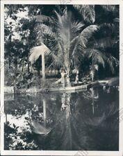 Dominican Republic Pool & Palms at the Mountain Resort La Toma Press Photo