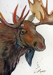 "Watercolor original painting 8""x11"" animal moose art by Anne Gorywine"