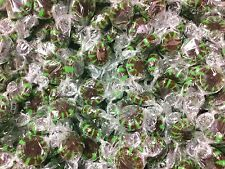 Primrose Chocolate Starlight Mints Hard candy bulk wrapped candy 2 Lbs.