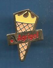 Pin's pin Glace AGRIGEL ICE CREAM (ref 038)