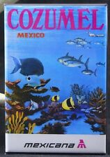 "Cozumel Mexico 2"" X 3"" Fridge / Locker Magnet."