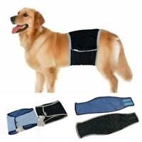 Haustier Hund Bauch Wickelband Windel Windelhose Binden Trainingshose XS - XL