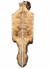 2x Pappel Maser Epixid Holz Maserholz burl 72x3/12cm 33mm