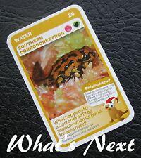 Woolworths<AUSSIE ANIMALS><Series 2 Baby Wildlife>CARD 26/36 Corroboree Frog