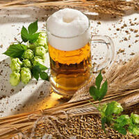 120pcs Rare Humulus Lupulus Seeds Hops Flower Home Garden Beer Plant Seed Decor