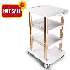 Beauty Salon Spa Styling Station Trolley Device Rolling Storage Tray Cart Stand