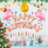 Happy Birthday Pink Flamingo Balloons Bunting Banner Set Party Decoration 18''