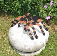 PRINTED INSTRUCTIONS-MY PET TARANTULA LIFESIZE SPIDER KNITTING PATTERN