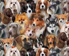 Fat Quarter Perros Razas Perros Animales 100% algodón acolchada Tela