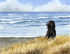 """Boykin Spaniel at the Beach"" Watercolor dog Art Print by Artist Djr"