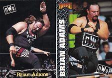 BORN IN KONA HAWAII 2 BRIAN ADAMS WCW WWF WWE WRESTLING CARDS