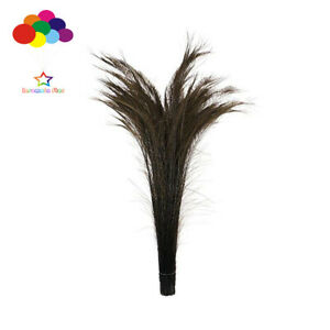 100 pcs Peacock sword Bleach coffee Dyed feathers 10-32in/25-80 cm wedding decor