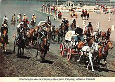 BR99270 chuckwagon races calgary stampede alberta  canada